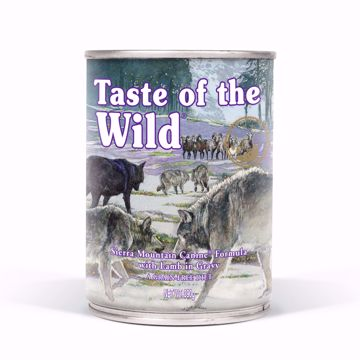 Imagem de TASTE OF THE WILD | Sierra Mountain Borrego 390 g