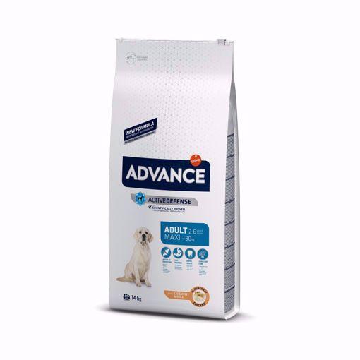 Imagem de ADVANCE Dog | Maxi Adult Chicken & Rice 14 kg
