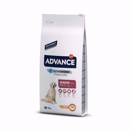 Imagem de ADVANCE Dog | Maxi Senior Chicken & Rice 14 kg