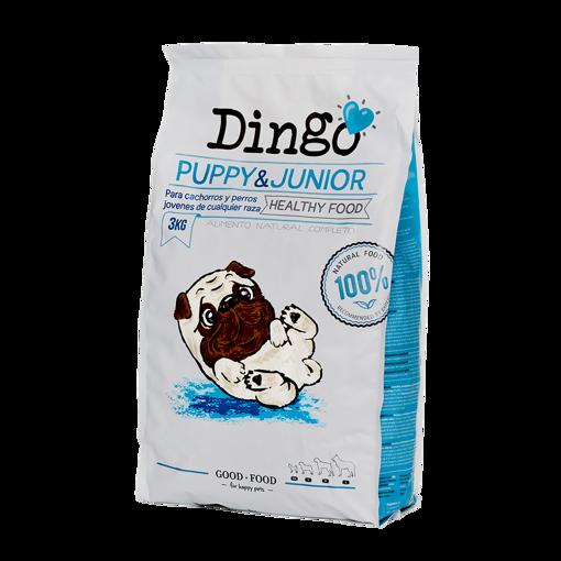 Imagem de DINGO   Puppy & Junior