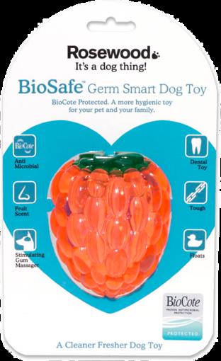 Imagem de BIOSAFE | Raspberry Toy