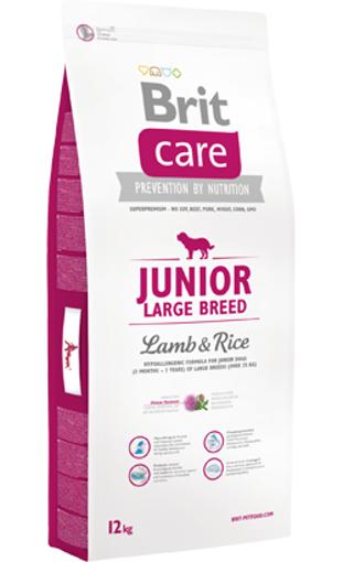 Brit Care Dog Junior Large Breed | Lamb & Rice