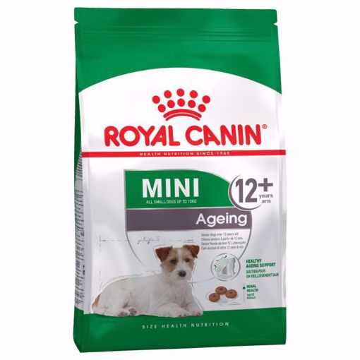 Imagem de ROYAL CANIN | Dog Mini Ageing 12+