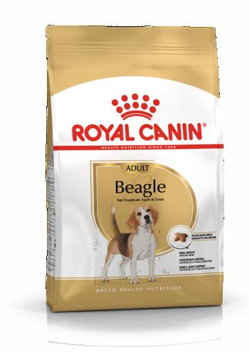 Imagem de ROYAL CANIN | Dog Beagle Adult