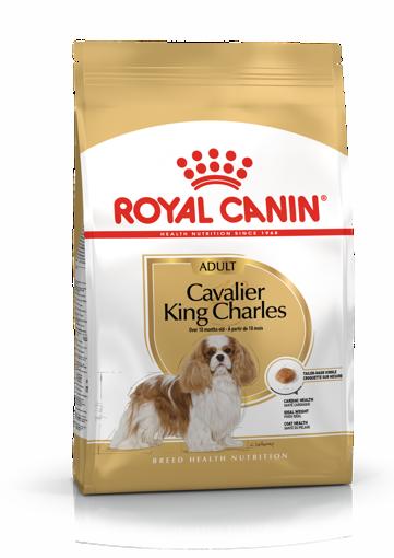 Imagem de ROYAL CANIN | Dog Cavalier King Charles Adult 3 kg