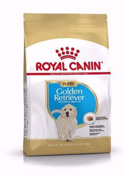 Imagem de ROYAL CANIN   Dog Golden Retriever Puppy 12 kg