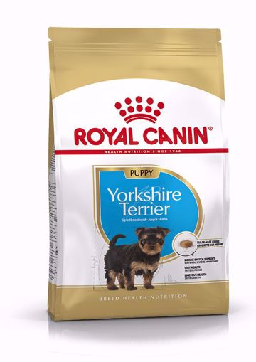 Imagem de ROYAL CANIN | Dog Yorkshire Terrier Puppy