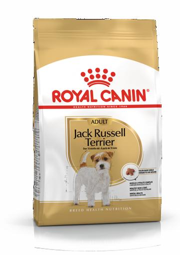 Imagem de ROYAL CANIN | Dog Jack Russell Adult 3 kg