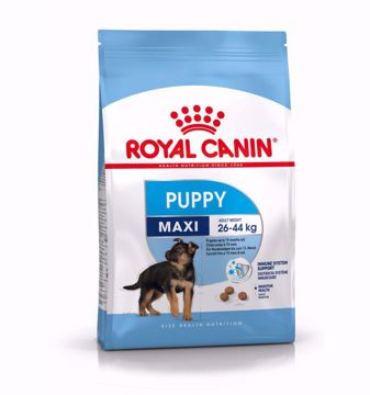 Imagem de ROYAL CANIN   Dog Maxi Puppy
