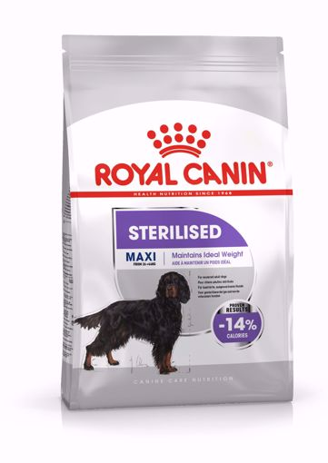 Imagem de ROYAL CANIN | Dog Maxi Sterilised