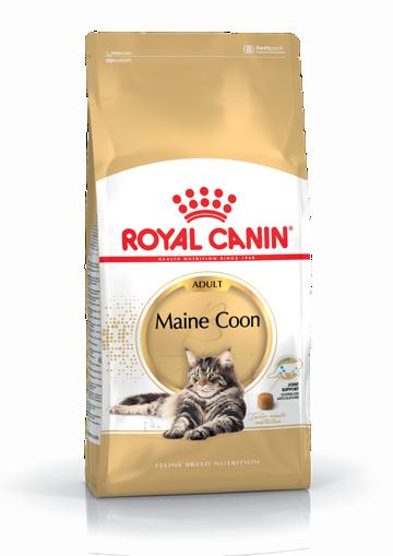 Imagem de ROYAL CANIN | Cat Main Coon Adult