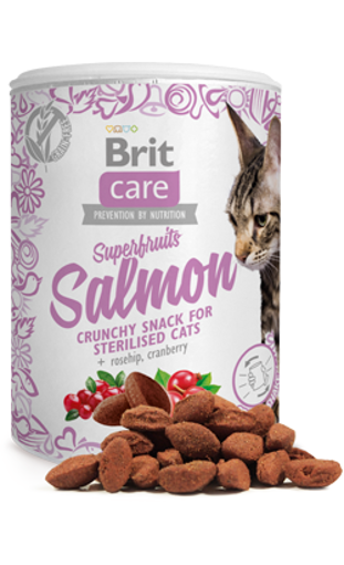 Imagem de BRIT Care | Cat Snack Superfruits Salmon 100 g