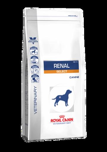 Imagem de ROYAL CANIN Vet | Renal Select Dog