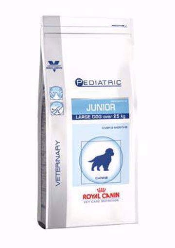Imagem de ROYAL CANIN Vet Care Nutrition | Pediatric Junior Large Dog