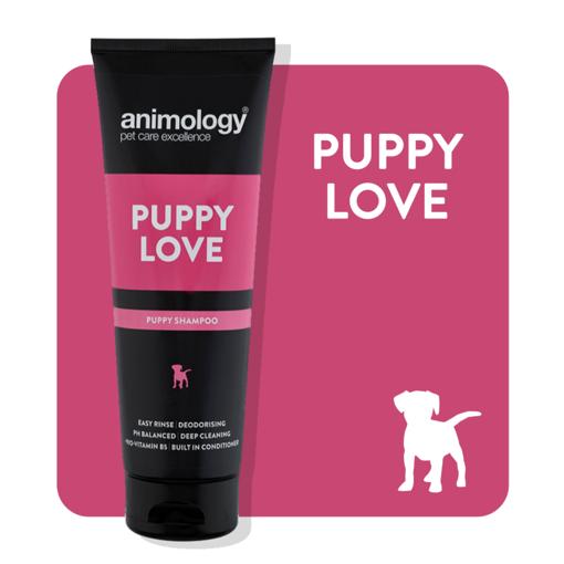 Imagem de ANIMOLOGY Dog | Shampoo Puppy Love 250 ml