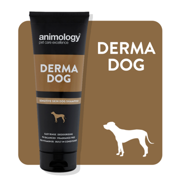 Imagem de ANIMOLOGY Dog | Shampoo Derma Dog 250 ml
