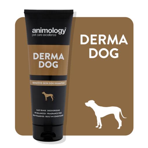 Imagem de ANIMOLOGY Dog | Shampoo Derma Dog 250 ml