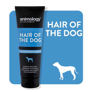 Imagem de ANIMOLOGY Dog | Shampooo Hair of the Dog 250 ml