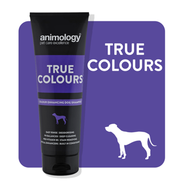 Imagem de ANIMOLOGY Dog | Shampoo True Colours 250 ml