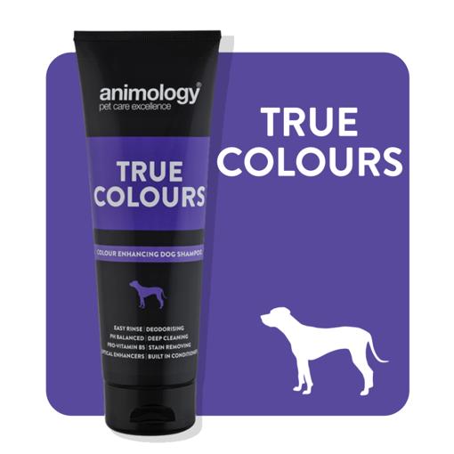 Imagem de ANIMOLOGY Dog | Shampoo True Colours 250 ml