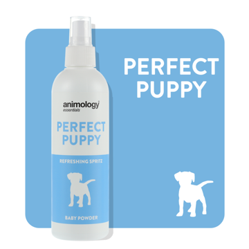 Imagem de ANIMOLOGY Dog | Spray Desodorizante para Cachorro Perfect Puppy 250 ml