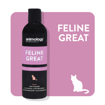 Imagem de ANIMOLOGY Cat | Shampoo Feline Great 250 ml