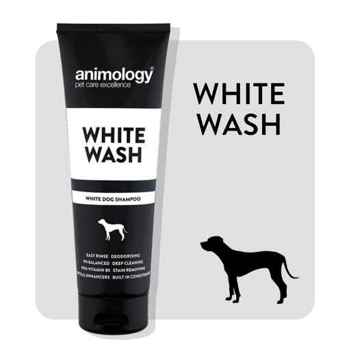 Imagem de ANIMOLOGY Dog | Shampoo White Wash 250 ml