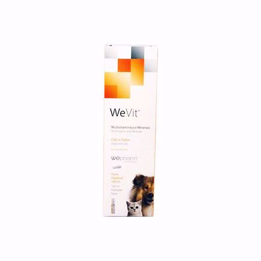 Imagem de WEPHARM | WeVit Tasty 100 ml