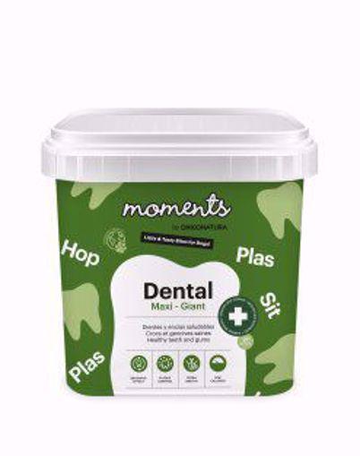 Imagem de MOMENTS | Dental Maxi - Giant Dog 500 g