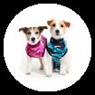 Imagem de SUITICAL Dog   Recovery Suit® - Fato de Recuperação pós Cirurgico   Pink Camo